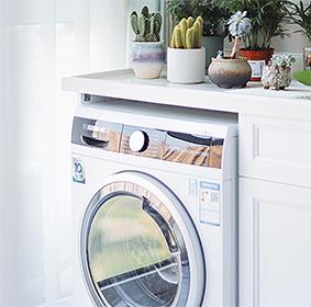 Front loading washing machine under shelf with assorted cacti